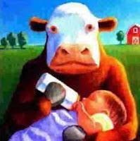 Informasi susu: Susu sapi bukan untuk manusia