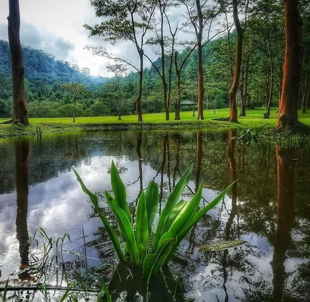 නිදහසේ ඉන්න සීතාවක Park යමුද? 🍃🎋🎋🌱❤️ ( Sithawaka Park ) - Your Choice Way