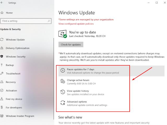 Trải nghiệm Windows 10 1903 final chính thức phát hàng cuối tháng 5/2019