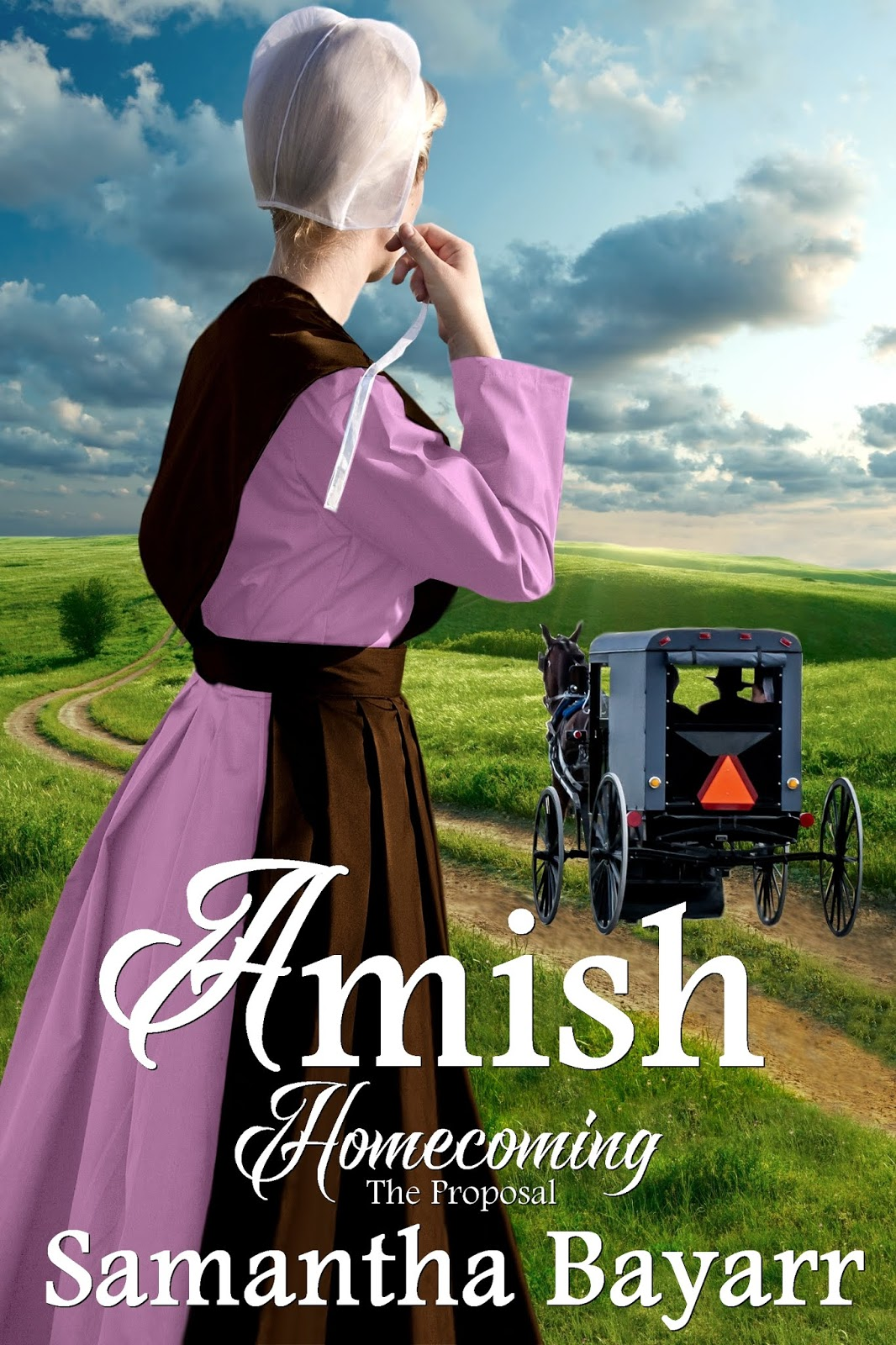 Christian Book Deals : Amish Homecoming series on Kindle