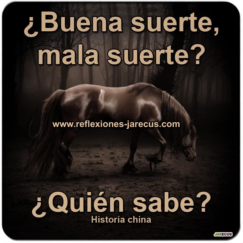 Una historia china habla de un anciano labrador que tenía un viejo caballo para cultivar sus campos. Un día, el caballo escapó a las montañas.