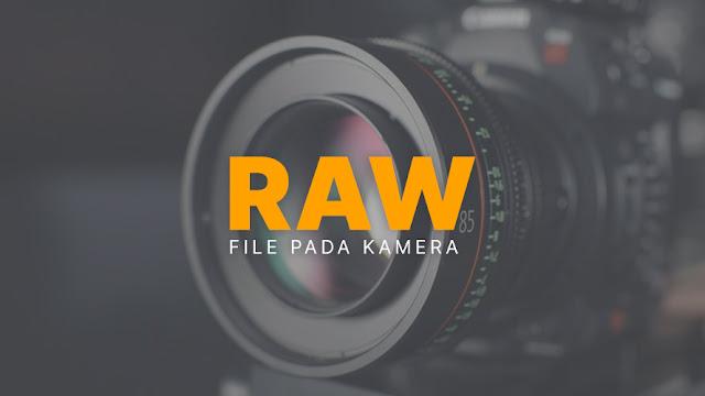 Mengenal RAW File Pada Kamera (Kelebihan dan Kekurangannya)