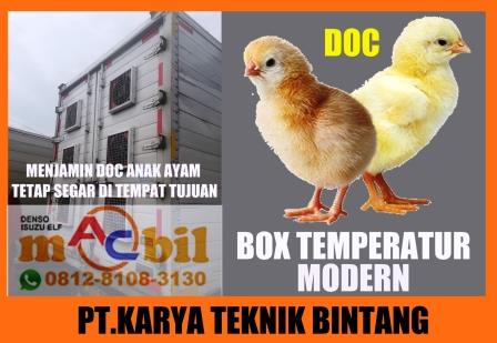 mobil box doc anak ayam temperatur modern