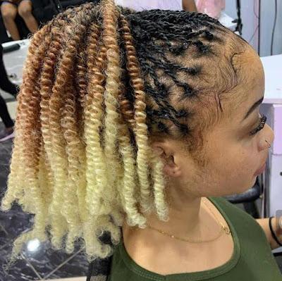 Best Nubian twist braids for ladies
