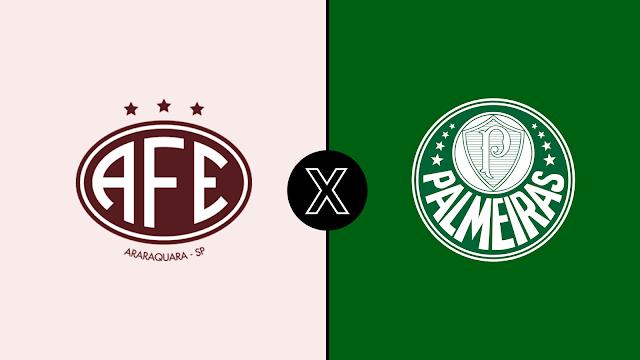 Assistir Palmeiras x Ferroviária-SP ao vivo grátis