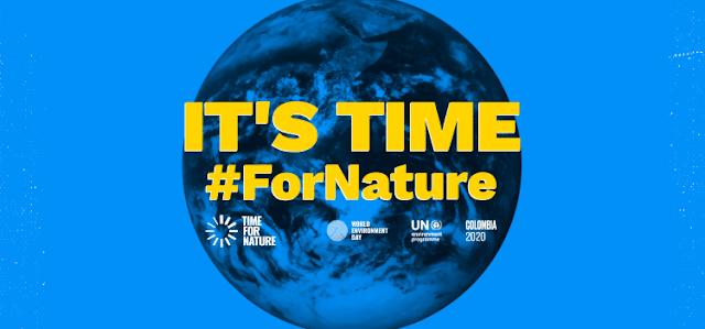 Hari Lingkungan Hidup, Momentum Pentingnya Keanekaragaman Hayati