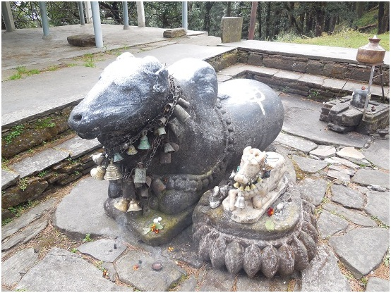 nandi bail at mandir complex