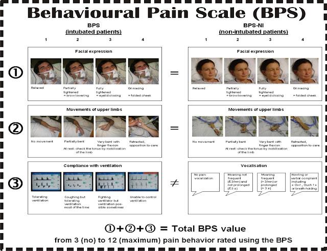 Kriteria Penilaian Nyeri secara BPS (Behavior Pain Scale)