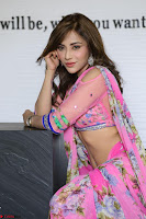 Angela Krislinzki Rogue Movie Fame Telugu Actress in Saree Backless Choli 031.JPG