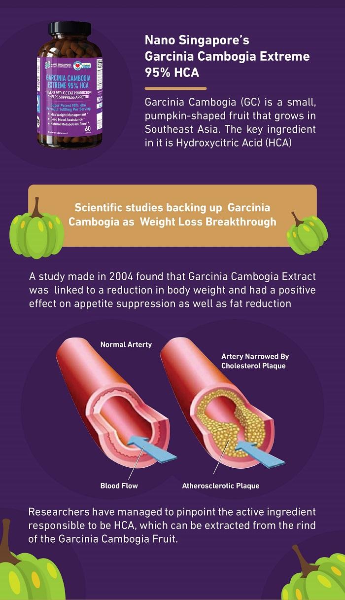 Benefits of Taking Garcinia Cambogia Supplement Nano Singapore
