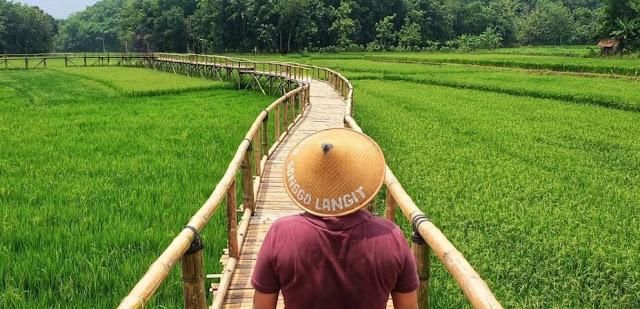 """Wisata Jelajah Sawah Pertanian Bowongan """"Songgo Langit"""""""