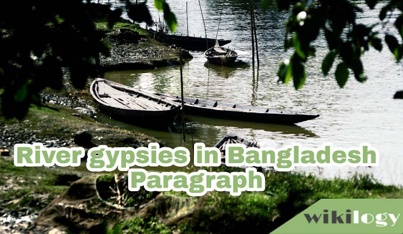 River Gypsies in Bangladesh Paragraph