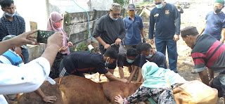 KSOP Marunda  Rayakan Idul Adha dengan Pemotongan Hewan Kurban dan Santunan Anak Yatim
