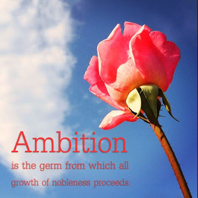 Awesome Ambition Quotes