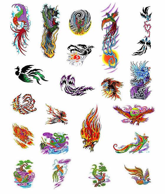 Anchor Tattoos Designs Bird Of Paradise Tattoos Designs
