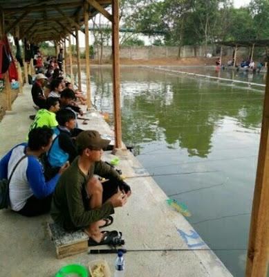 umpan ikan patin kolam air hijau