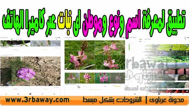 تطبيق plantnet لمعرفة اسم ونوع وموطن اى زهرة او نبات عبر كاميرا الهاتف