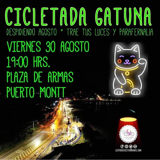 Cicletada Gatuna