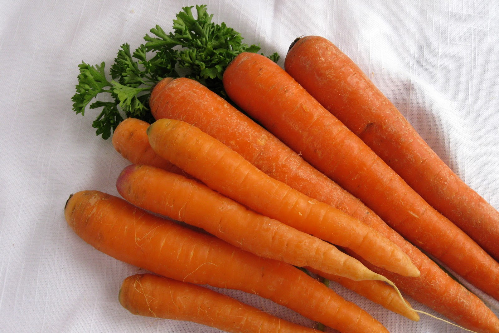 Carrot - Fruits And Vegetables