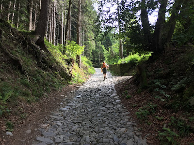 Trail 551 on the way to Rifugio Magnolini