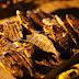 Το δυνατό ατού της Θεσπρωτίας οι ιχθυοκαλλιέργειες- Με επιτυχία η γιορτή τσιπούρας στη Σαγιάδα