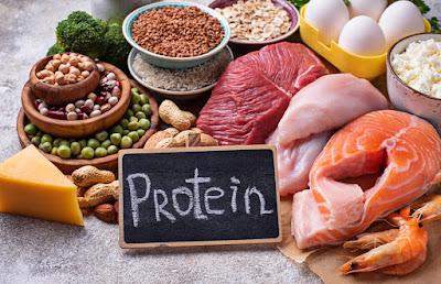 ما هو البروتين وأهميته للجسم
