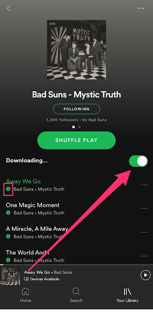 how to download songs on spotify, entertainment, download, Spotify Premium apk for PC, How to download music from Spotify to phone, How to download music from Spotify to computer