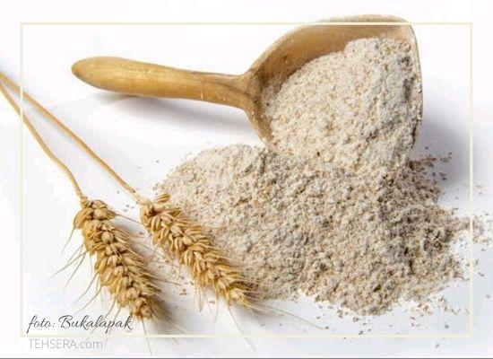 tepung terigu protein tinggi