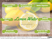 Top 7 Health Benefits of Lemon Water