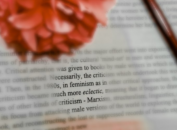 Watered Down Feminism: A move from collective to individual empowerment