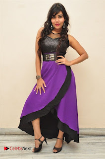 Telugu Actress Rachana Smith Stills at Money is Honey Audio Release  0091.jpg