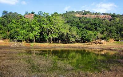 Image result for jawadhu hills trekking