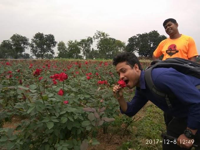 Rose garden,sadullahpur