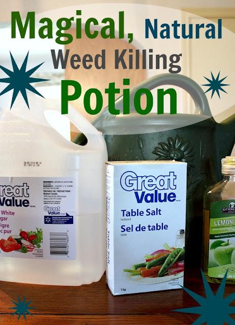 Homemade weed killer ingredients