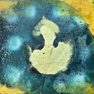 Wet cyanotype_Sue Reno_image 819