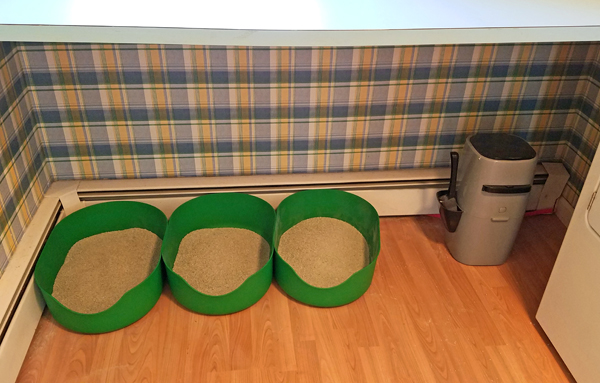 image of three green litter boxes in a row in my laundry room