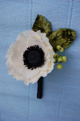 anemone boutonierre