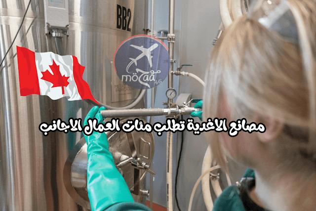 مصانع الطعام الكندية بحاجة الى عمال اجانب و كيفية التسجيل بالصور