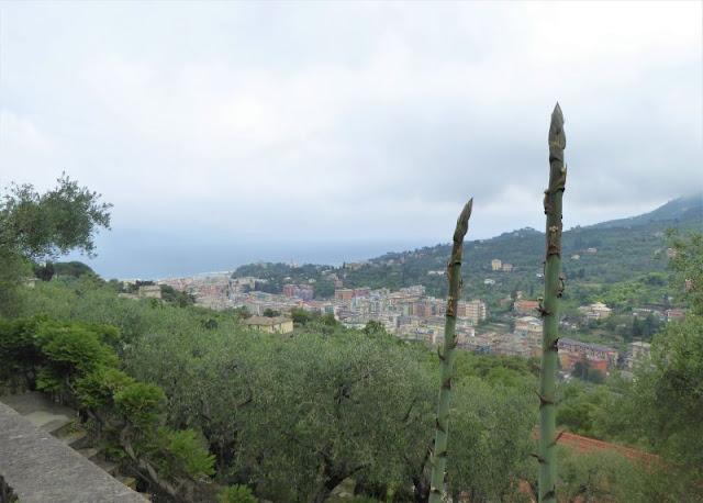 Veduta su Santa Margherita Ligure