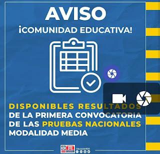 resultados-pruebas-2019