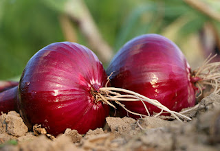 12 Charismatic Health Benefit of Onion