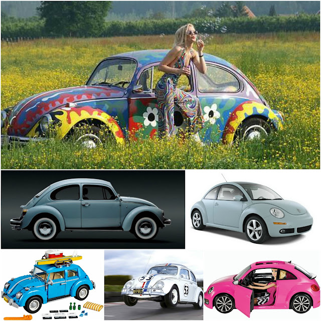 coches-beetle