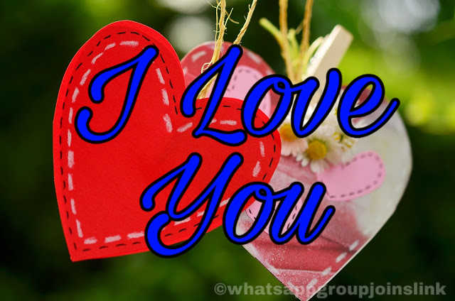 I Love You Pictures, Photos, Images, and Pics for Facebook, Tumblr, Pinterest, and Twitter