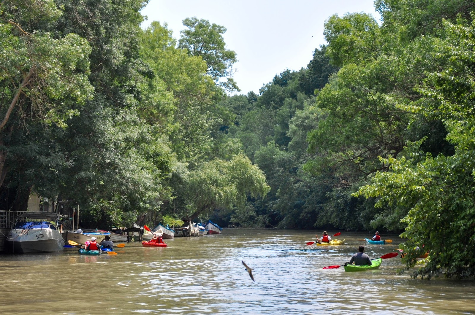 Canoeing down Kamchia river, Bulgaria