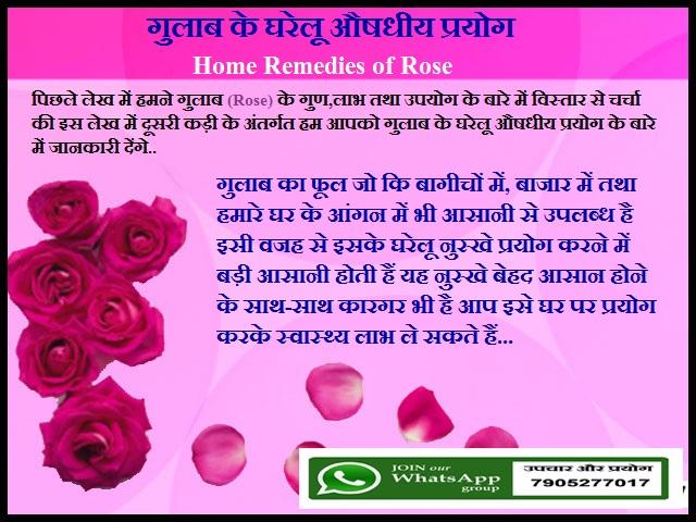 गुलाब के घरेलू औषधीय प्रयोग