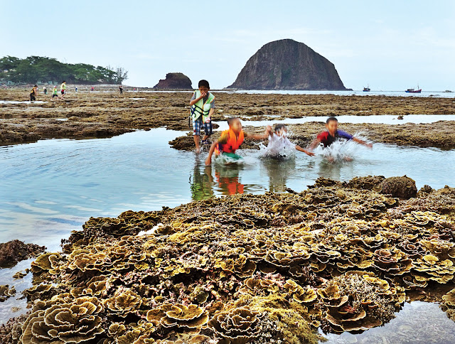 Dịch vụ du lịch Phú Yên - Trẻ em thích thú lặn ngụp trong nước biển, du khách và các nhiếp ảnh gia hào hứng khám phá san hô Hòn Yến