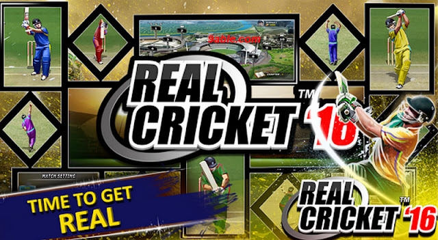 Real-Cricket-16