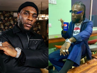 Burna Boy Flaunts Pet Monkey