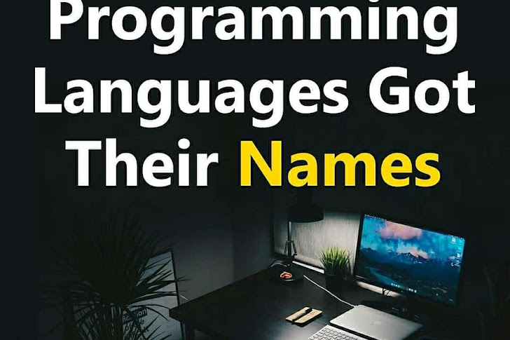 How different programming languages got their names