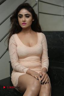 Telugu Actress Model Sony Charishta Stills in Short Dress at Rapture 2017 Grand Logo Launch  0076.JPG